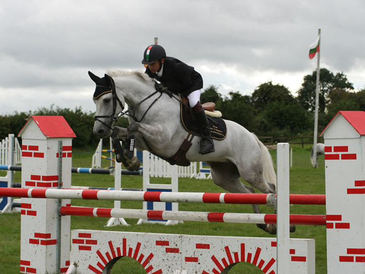 SCD 148ABC Whos Aero Irish Connemara Pony